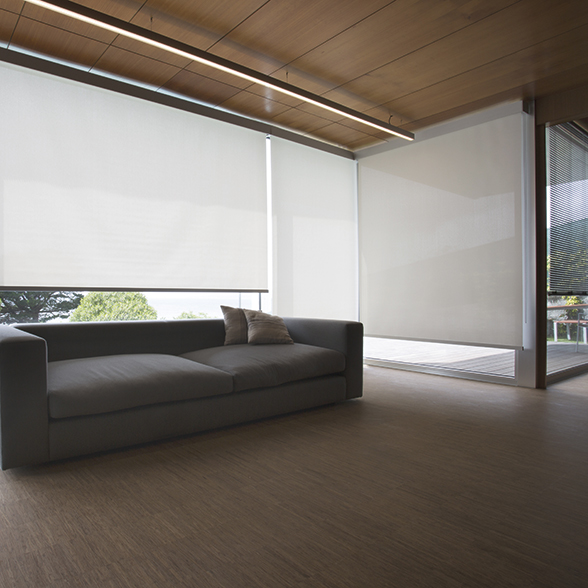 decorative-roller-shades